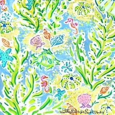 Is this real life or just another fantasea? #Lilly5x5
