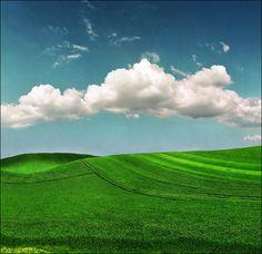 Smaragdine field by Katarina 2353, via Flickr. Serbia