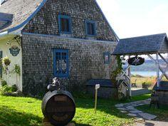 Pionniers de la viticulture au Québec, la famille Roy-Bouchard a fondé il y a 31 ans, le premier vignoble de l'Île d'Orléans et ce, dans le contexte patrimonial d'une maison ancestrale datant de 1712.