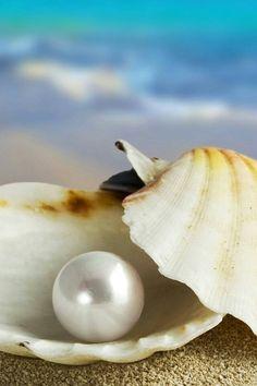 Perfect Pearl