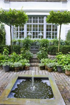Brick patio, container garden, herbs in container, water feature, patio fountain, small reflecting pool
