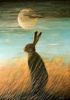 Twilight Hare print by Christopher Fry (Prints) available at Glastonbury Galleries, Somerset. Other prints by Christopher Fry (Prints) and prints by other artists also available. Hare Illustration, Illustrations, Year Of The Rabbit, Rabbit Art, Rabbit Life, Bunny Art, Wow Art, Animal Paintings, Stars And Moon