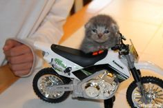 'Nuff talk! Let's ride!