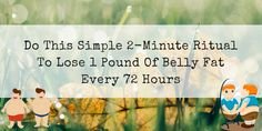 Lose one Pound of Belly Fat every 72 hours with Best Selling Lean Belly Breakthrough Program. Personal Fitness, Health Goals, Flat Belly, 10 Pounds, Fat, Weight Loss, Exercise, How To Plan, Twitter