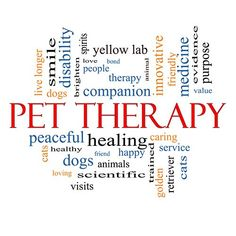 Pet Therapy and Service Dogs for Autism - Autism Gazette Personalized Dog Beds, Emotional Support Animal, Therapy Quotes, Therapy Dogs, Training Your Dog, Potty Training, Service Dogs, Dog Quotes, Love People