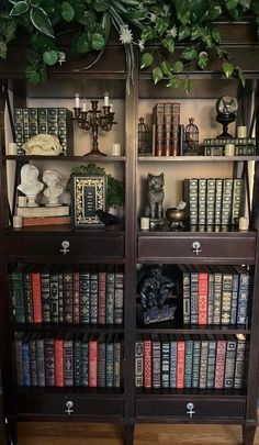 Goth Home Decor, Diy Home Decor, Front Room Decor, Bookcase Styling, Gothic House, Living Room Colors, Room Inspiration, House Design, Interior Design