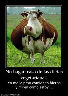 No hagan caso de las dietas vegetarianas. Yo me la paso comiendo hierba y miren como estoy ...