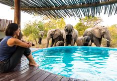 """Located in the heart of the Klaserie Private Nature Reserve, Africa on Foot offers guests the opportunity to experience a professional Big Five driving or walking safari in the Kruger.  The atmosphere at camp is relaxed. The focus is on authenticity and the African """"bush"""" as opposed to excessive luxury. Guests will be made to feel they are part of the Africa on Foot family. There are only five chalets which means a personalised, intimate service."""