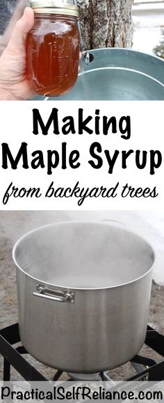 Making Maple Syrup — Practical Self Reliance While I love tending my garden in the summertime, for me, there's nothing that compares Homemade Maple Syrup, Maple Syrup Recipes, Cinnamon Recipes, Honey Recipes, Backyard Hammock, Backyard Trees, Hammock Ideas, Mango Sorbet, Maple Pecan