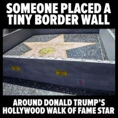 A collection of funny memes and viral images skewering Republican presidential nominee Donald Trump.: Trump's Hollywood Walk of Fame Star