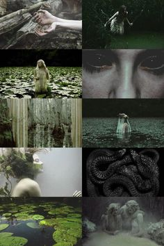 dziwożona aesthetic. The Dziwożona is a female swamp demon or evil fairy in Slavic mythology known for being malicious and dangerous. These beings supposedly live in thickets near rivers, streams and lakes. Dziwożona is also a shape shifter and can appear as a beautiful nymph capable of luring young men to their death.