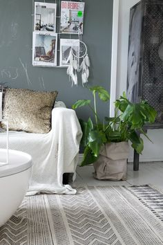Reinventing a Room - the plant
