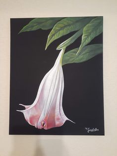 Acrylic on canvas, Angel Trumpet, Canvas, Artist, Painting, Tela, Artists, Painting Art, Canvases, Paintings