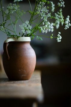 Cow parsley flowers in terracotta jug on rustic table Wild Flowers, Beautiful Flowers, Simple Flowers, Cut Flowers, Cow Parsley, Vases, Deco Floral, Floral Design, Queen Annes Lace