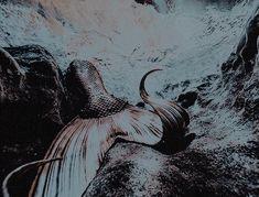 Alaska, Abstract, Hamilton, Artwork, Summary, Work Of Art, Auguste Rodin Artwork, Artworks, Illustrators
