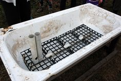 Carrots can be tricky to get growing. Try a home-made self watering wicking bed using an old bath tub.
