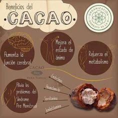 Helpful Cacao Benefit Tips For cacao benefits nutrition Funny Chocolate Quotes, Chocolate Humor, Cacao Chocolate, Chocolate Factory, Chocolates, Chocolate Benefits, Healthy Tips, Healthy Recipes, Food Manufacturing