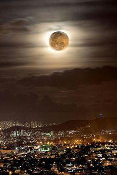 Moonlit Night share moments