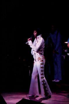 Elvis in concert at the Madison Square Garden in june 10 1972 Elvis Presley Concerts, Elvis Presley Family, Elvis In Concert, Elvis Sings, You're Hot, Graceland, Forever Love, Photos Du, Belle Photo