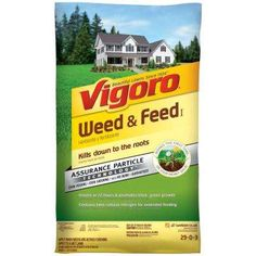 Vigoro 44 Lb 15 000 Sq Ft Weed And Feed Fertilizer