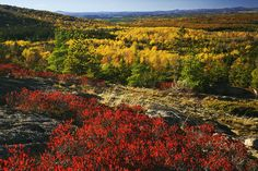 Acadia National Park, Maine | 21 Most Colorful And Vibrant Places In The World