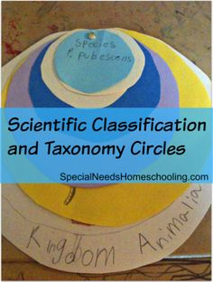 Scientific Classifications and Taxonomy Circles - so easy and a fun visual learning tool! Use with Apologia Zoology www.apologia.com
