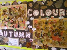 What a wonderful display of Autumn Collages Autumn Crafts, Autumn Art, Autumn Theme, Autumn Leaves, Autumn Ideas, School Displays, Classroom Displays, Autumn Display Classroom, Autumn Display Eyfs