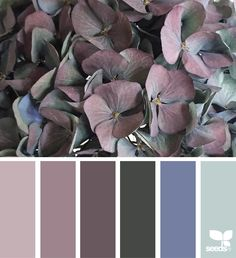 Flora tones... Another pretty hydrangea inspiration.