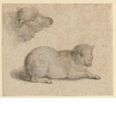 Hans Holbein the Younger,  Ruhendes Lamm und Kopf eines Lammes, um 1523