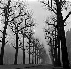 luzfosca:  Thomas Mcavoy  Paris Fog, Undated  From Time Life/Getty Images