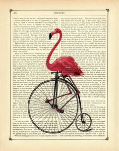 For the friend who appreciates vintage modes of transportation. And flamingos.