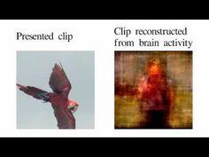 これで夢の中の風景も記録できるようになるかも...スキャンした脳の活動から映像を再現するシステム(動画あり)