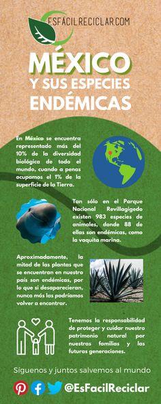 Conoce la #Biodiversidad de México: #EsFácilReciclar #UnaAccionUnMundo #PequeñasAcciones #DefiendeAlMundo #MiMundo #OneEarth #3R #Recicla #Reusa #Reduce #Reciclaje #SomosHeroes #Tierra