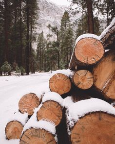 by Eric Luis Winter Cabin, Winter Love, Winter Is Coming, Winter Christmas, Christmas Time, Christmas Aesthetic, New Years Decorations, Winter Photography, Of Wallpaper