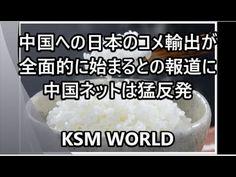【KSM】中国への日本のコメ輸出が全面的に始まるとの報道に中国ネットは猛反発
