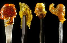 Know Your Dab Concentrates- Cannabis Now Magazine