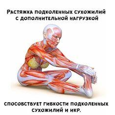 Yoga Fitness, Health Fitness, Yoga Anatomy, Slow Metabolism, Morning Yoga, Asana, Excercise, Yoga Poses, Pilates