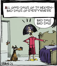 All dogs go to heaven ... right? | Read Reality Check #comics…