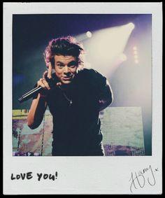 Harry Styles (polaroid) - TMH Tour Moments