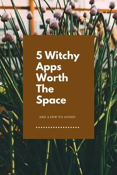 Welcome - 5 Witchy Apps Worth the Space (And a Few to Avoid) - Welcome