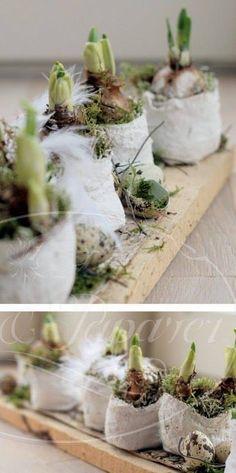 Bulbs : DIY tutorial  by Pot en papaver Take a look at www.potenpapaver.be