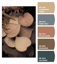 Instantly turn any picture into a palette with ColorSnap, created for you by Sherwin-Williams. House Color Schemes, Colour Schemes, Color Combos, Exterior House Colors, Exterior Paint, Colorful Decor, Colorful Interiors, Living Room Decor Colors, Sherwin William Paint