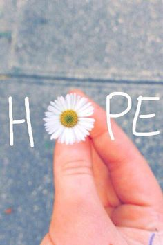 Hope and daisies Ahhhhh Tumblr Photography, Creative Photography, Nature Photography, Creative Instagram Photo Ideas, Instagram Story Ideas, Sky Aesthetic, Flower Aesthetic, Wallpaper Quotes, Wallpaper Backgrounds