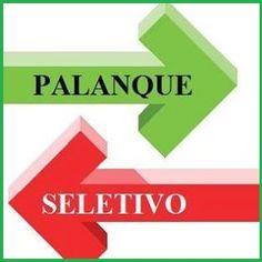 WWW. palanqueseletivo.com