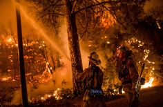 Bush fire in California (via The Guardian) Mother Earth, Mother Nature, Path Of Destruction, California Wildfires, Tornadoes, Sierra Nevada, Extreme Weather, Natural Disasters, Northern California