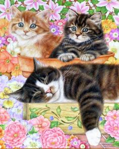cat paintings - Bing Images