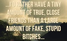 I'd rather have a tiny amount of true, close friends than a large amount of fake, stupid bitches..