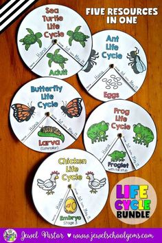Life Cycle Activities BUNDLE (Animal Life Cycle Crafts) Life Cycles Bundle (Ants, Butterflies, Chickens, Frogs and Sea Turtles) by Jewel Pastor (TeachersPayTeachers) Preschool Science, Teaching Science, Science For Kids, Science Activities, Life Science, Activities For Kids, Sequencing Activities, Science Lesson Plans, Animal Activities