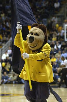Oski the California Bear mascot. He is a revered fixture in Berkeley and has been cheering the Golden Bears on since 1941.