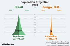 Population structure of Brazil and Congo during the 1960-2060 period